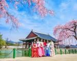 Hàn Quốc sẽ cấp visa 5 năm cho người Việt
