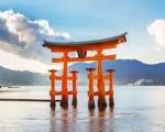 Dịch vụ xin visa Nhật trọn gói