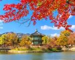 Visa công tác Hàn Quốc